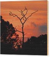 Sunken Sun Wood Print