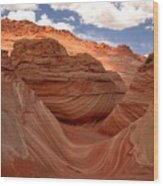 Sunkiss At Coyote Buttes Wood Print