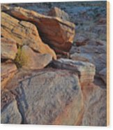 Sunlight Fades Out On Valley Of Fire Wood Print