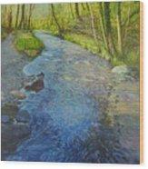 Sunlight In The Glen Wood Print