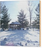 Sunlight In Winter Wood Print