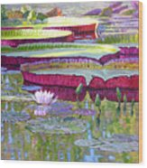 Sunlight On Lily Pads Wood Print