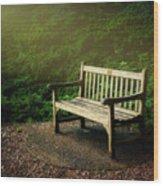 Sunlight On Park Bench Wood Print