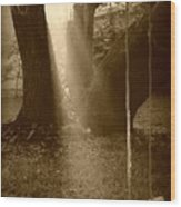 Sunlight On Swing - Sepia Wood Print