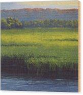 Sunlight On The Marsh Wood Print