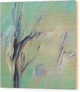 Sunlight Through The Oaks Wood Print