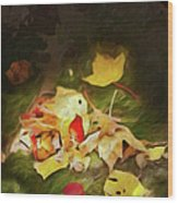 Sunlit Autumn Leaves On Dark Moss Ap Wood Print