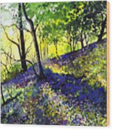 Sunlit Bluebell Wood Wood Print