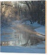 Sunlit Creek  Wood Print