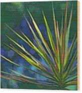 Sunlit Dracaena Marginata Wood Print