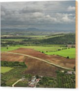 Sunlit Farms And Fields Below Arcos De La Frontera Andalusia Spa Wood Print