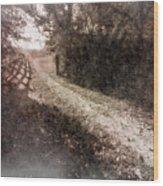 Sunlit Pathway Wood Print