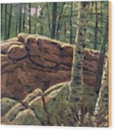 Sunlit Rocks Wood Print