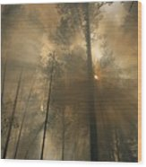 Sunlit Smoke Whispers The Firefighters Wood Print