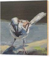 Sunlit Sparrow Wood Print