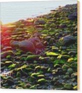 Sunlit Stones Wood Print