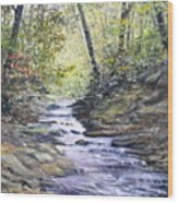 Sunlit Stream Wood Print