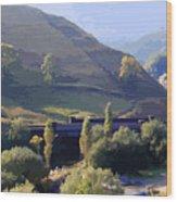 Sunlit Valley  Wood Print