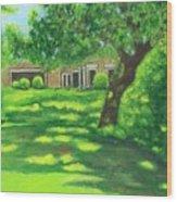 Sunlit View Wood Print