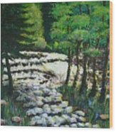 Sunlit Waterfall Wood Print
