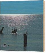 Sunlit Waters Wood Print