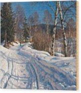 Sunlit Winter Landscape Wood Print