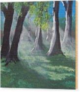 Sunlit Woods Wood Print
