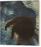 Sunning Shadow Wood Print by David Sutter