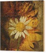 Sunny Antiqued Wood Print
