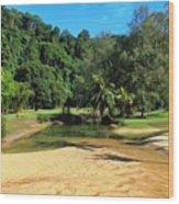 Sunny Beach Tioman Island Wood Print