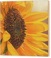 Sunny Beauty Wood Print