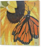 Sunny Butterfly Wood Print