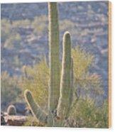 Sunny Cactus Wood Print