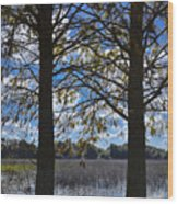 Sunny Day On The Pond Wood Print