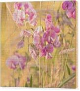 Sunny Garden 3 Wood Print