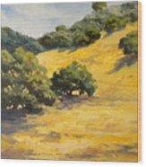 Sunny Hills Wood Print
