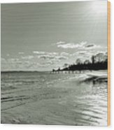 Sunny March Day On The West Beach Wood Print