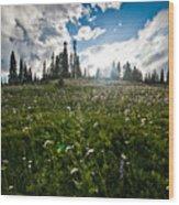 Sunny Meadows  Wood Print