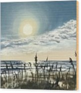 Sunny Morning On Crescent Beach Wood Print