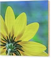 Sunny Outlook Wood Print