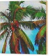 Sunny Palms Wood Print