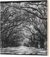 Sunny Southern Day - Black And White With Black Border Wood Print
