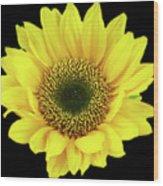 Sunny Sunflower Black Yellow Wood Print
