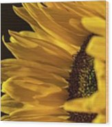 Sunny Too By Mike-hope Wood Print
