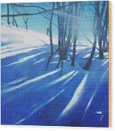 Sunny Traintrip To Hamar Wood Print