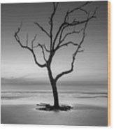 Sunrise And A Driftwood Tree In Black And White Wood Print