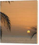 Sunrise And Palms Wood Print