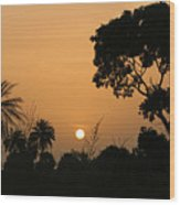Sunrise And Silhouettes Wood Print