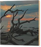 Sunrise At Driftwood Beach 2.2 Wood Print