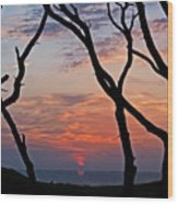 Sunrise At Fort Fisher Wood Print